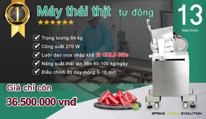 Máy thái cắt thịt công nghiệp tự động MS13A