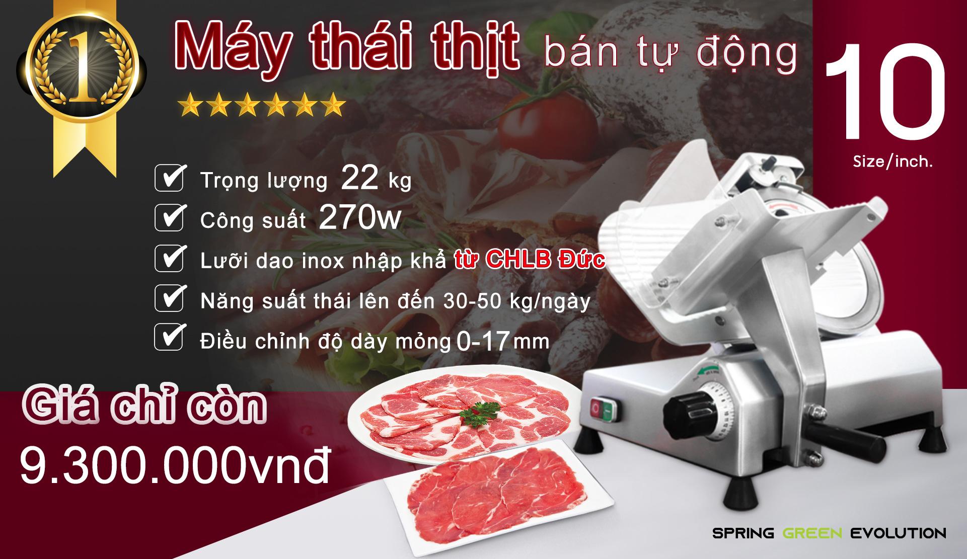 Máy cắt thịt đông lạnh bán tự động MS10