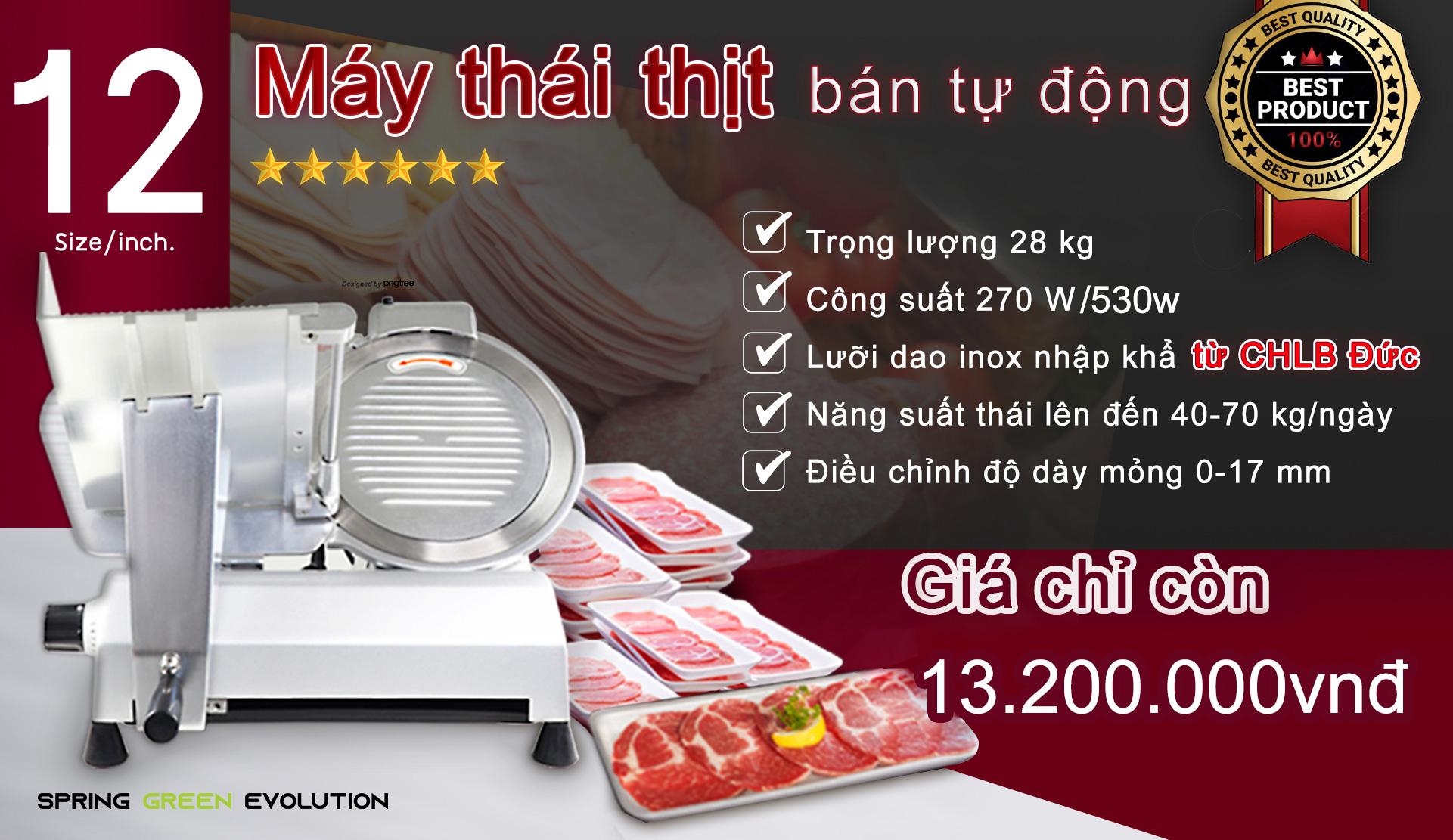 Máy cắt thịt đông lạnh công nghiệp MS12