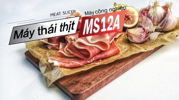 Máy thái thịt đông lạnh tự động MS12A cắt thái mọi sản phẩm